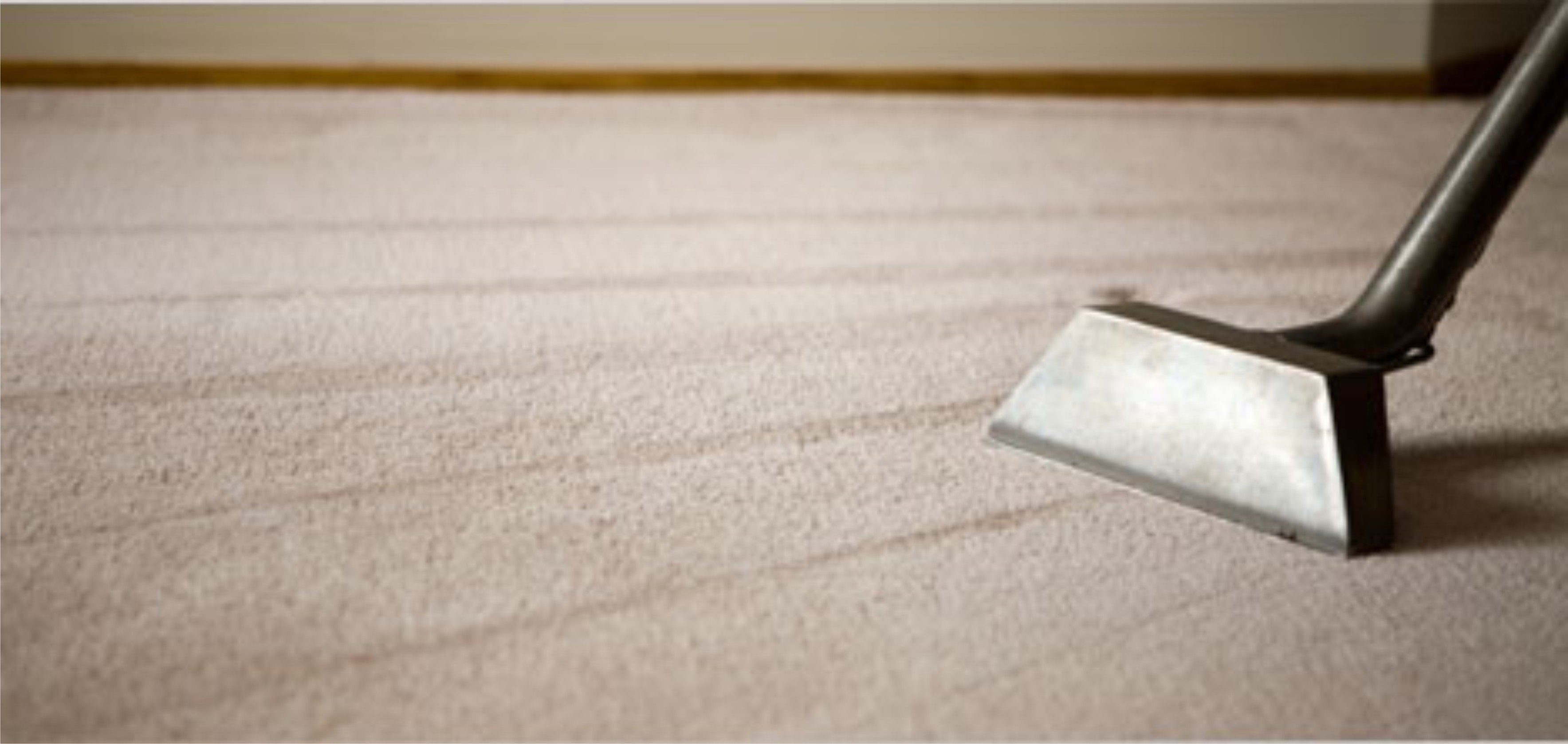Carpet Cleaning The Difference Between Dry Cleaning And Steam Cleaning Carpet
