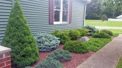 Small Of Best Landscaping Photos