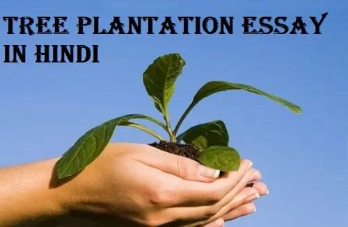Tree Plantation image - Hindi Ki Guide
