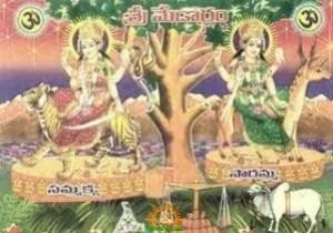 Sammakka Sarakka Jathara