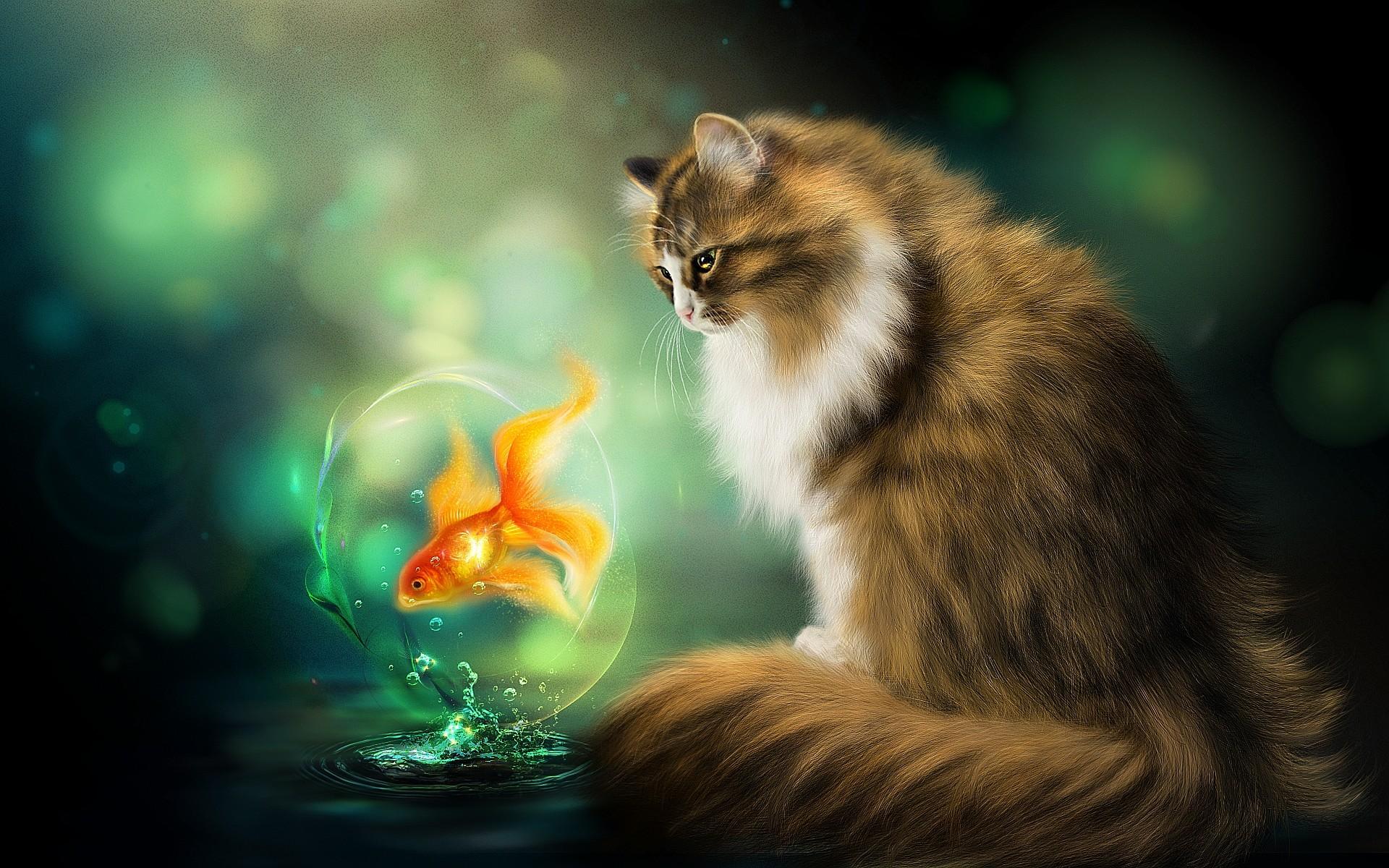 Beautiful Fall Paintings Wallpapers Die 71 Besten Katzen Hintergrundbilder