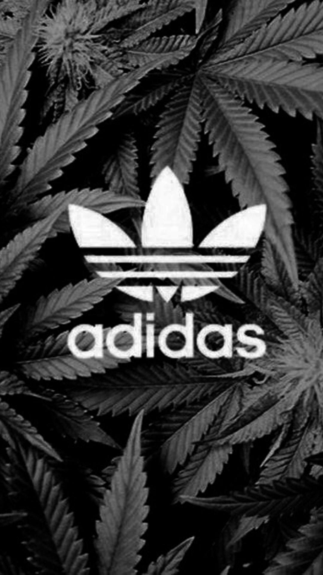 Htc One M8 Wallpaper Hd Die 74 Besten Adidas Wallpapers