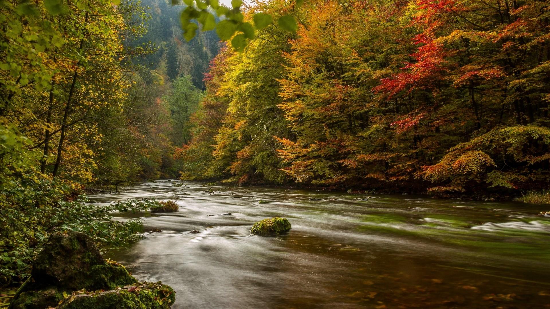 Fall Leaves Ipad Wallpaper Die 72 Besten Herbstlandschaft Hintergrundbilder