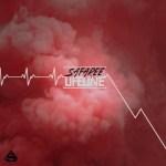 New Music Alert: Safaree Samuels Drops a Meek Mill Diss Track Called 'Lifetime'