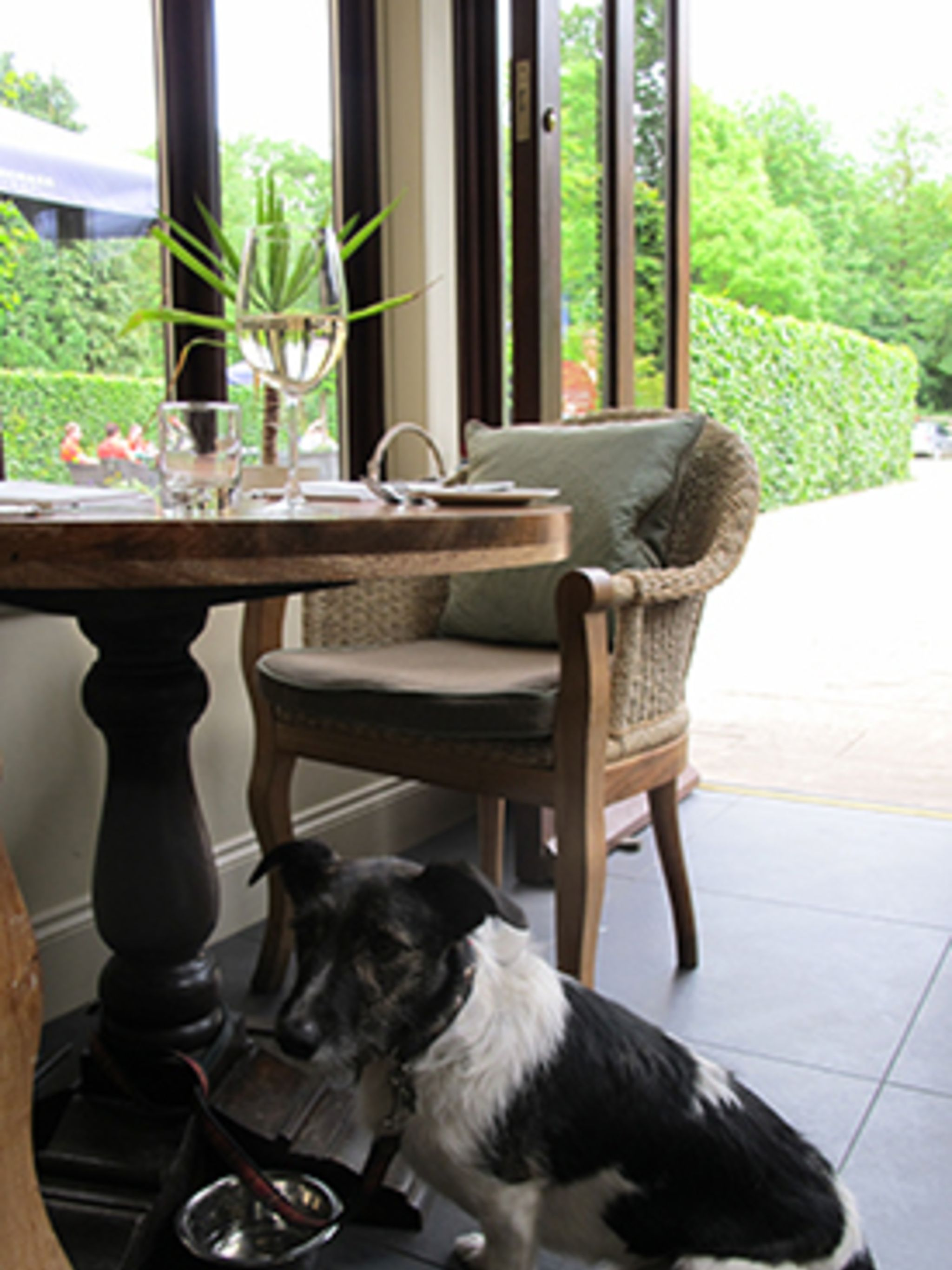 Bed And Breakfast Matlock 5 Of The Best Dog Friendly Hotels