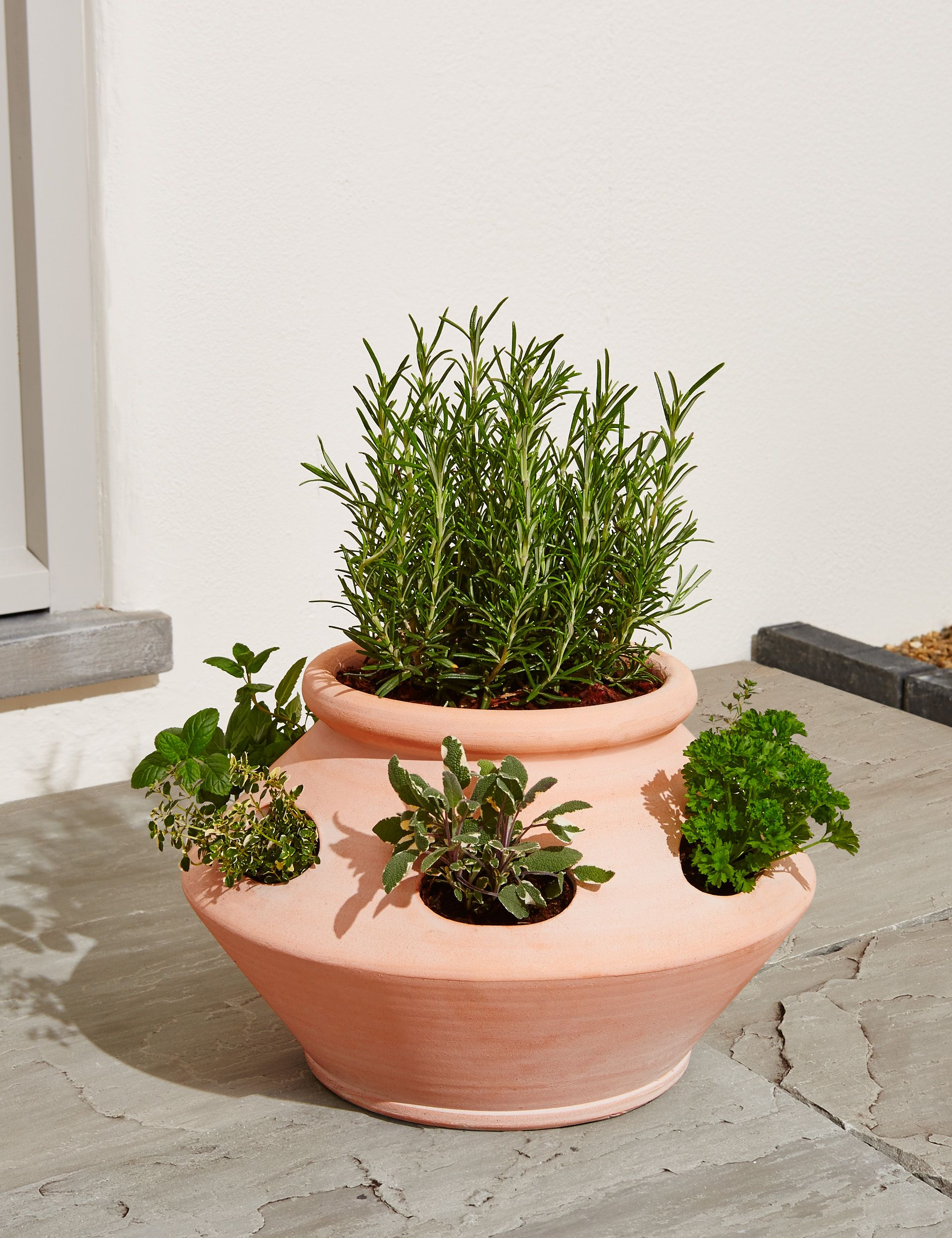 Planter For Herbs Marks Spencer S Terracotta Herb Planter Is A Garden Must Have