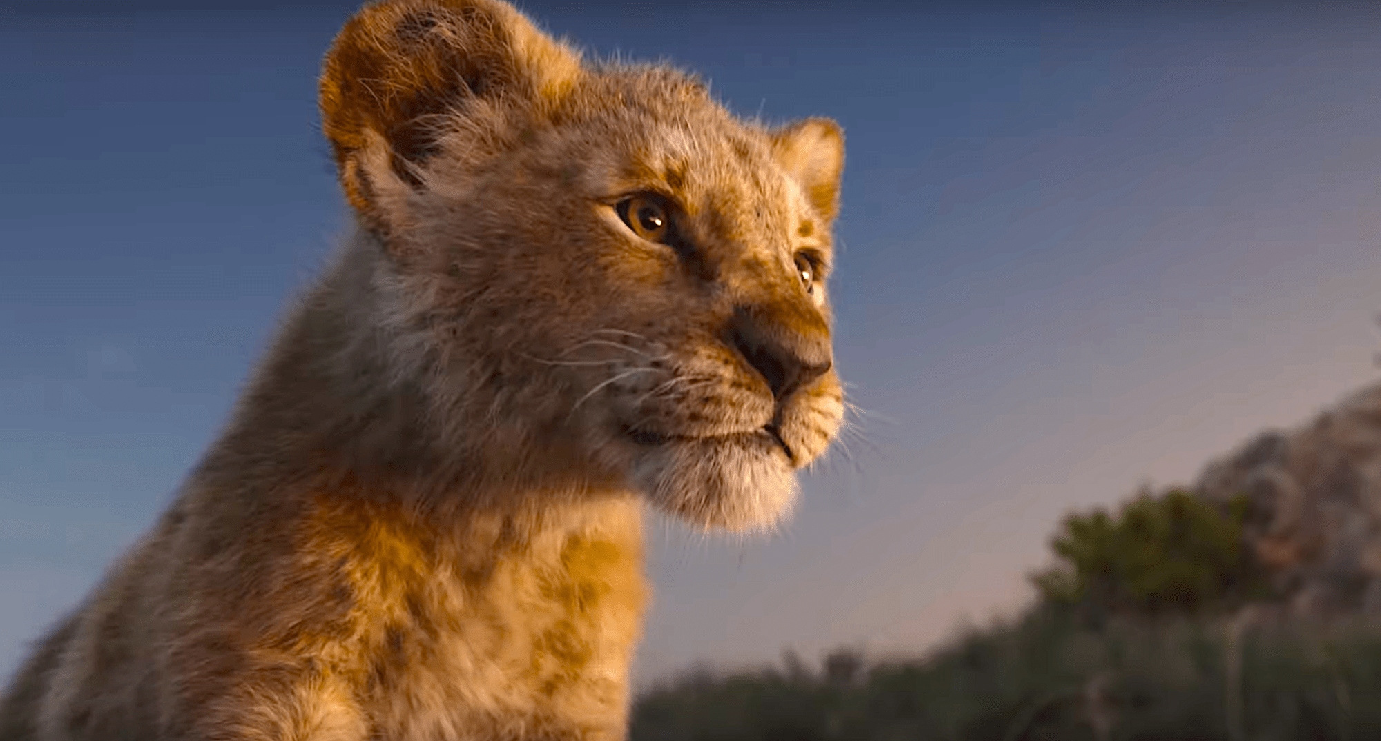 the lion king 2019 first trailer