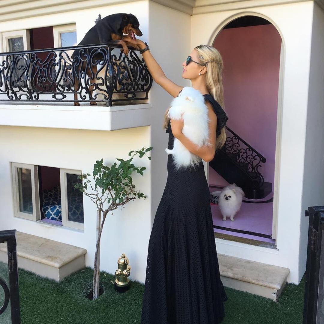 Paris Hilton Dog House Paris Hilton S Dog Mansion