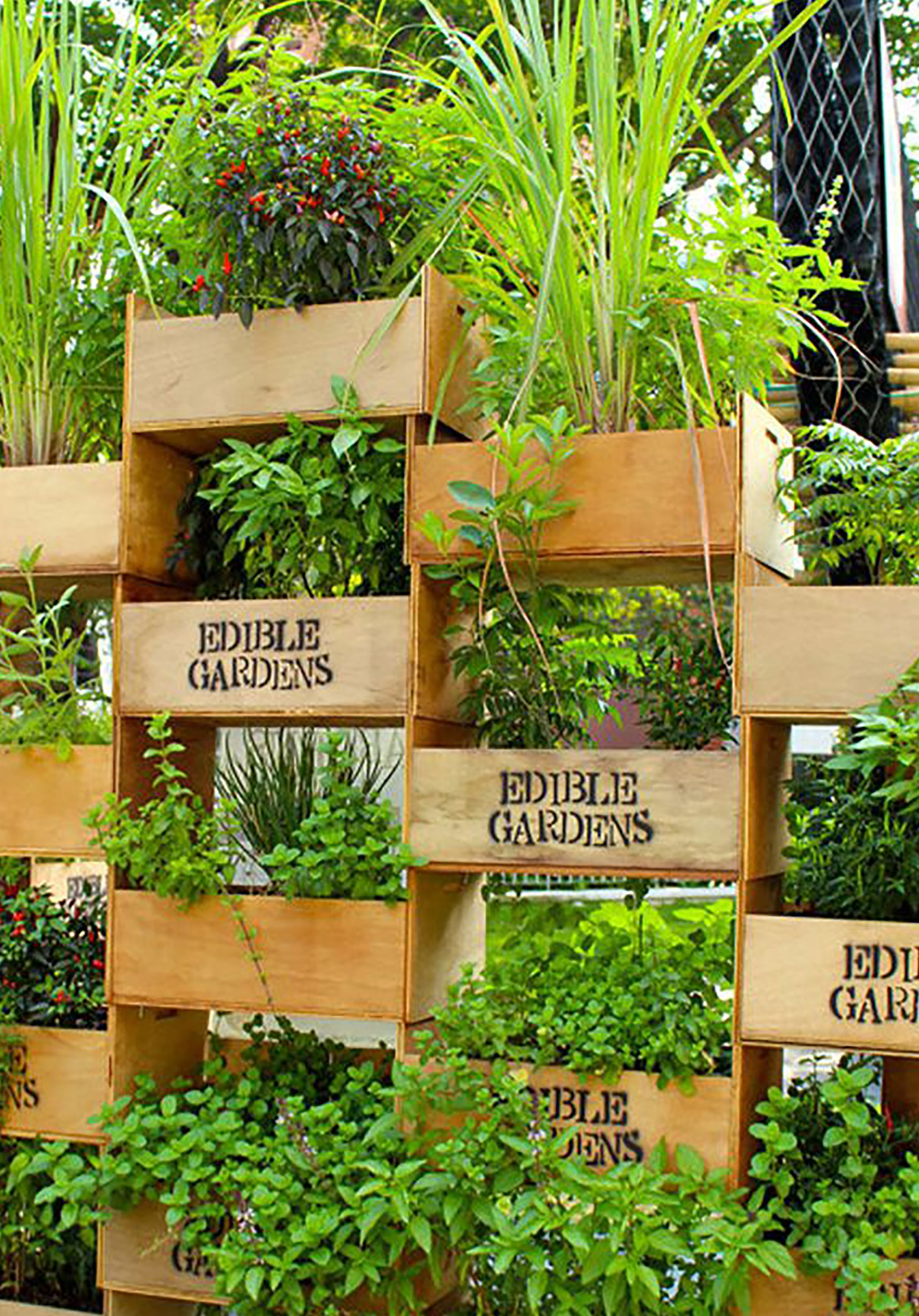 Fullsize Of Soda Bottle Vertical Garden