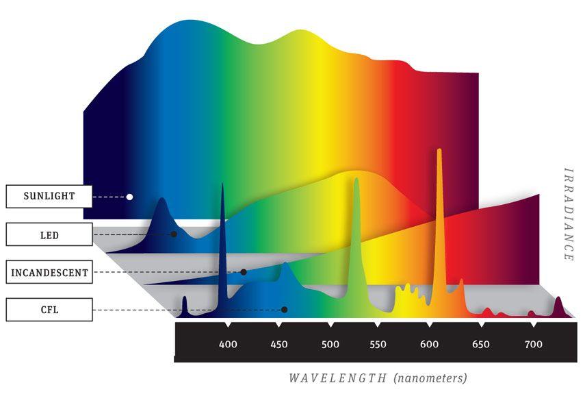 Ultimate Light Bulb Test - Incandescent vs Compact Fluorescent vs LED