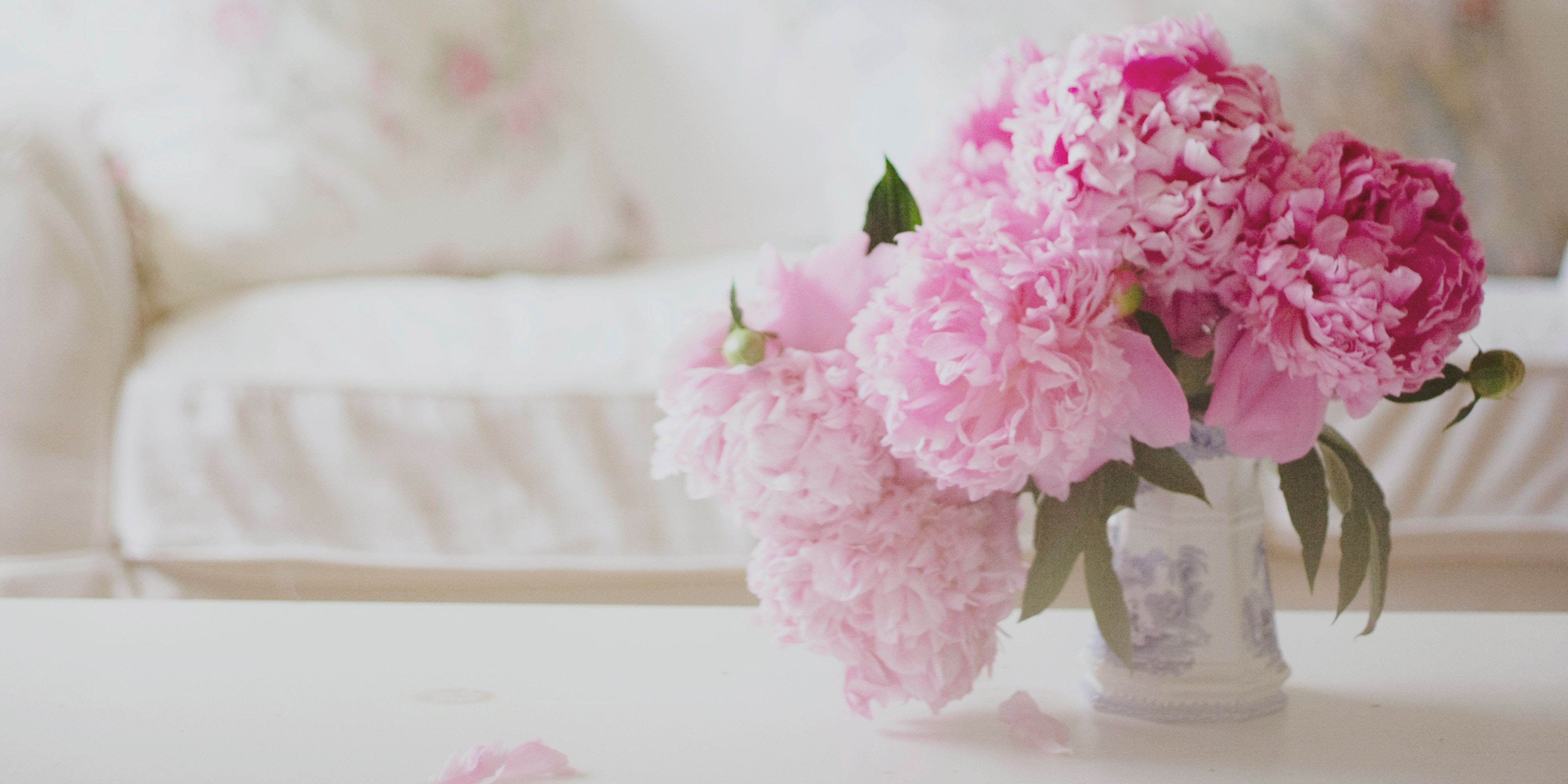 Pianese Flowers 12 Facts About Peonies History Of The Peony Flower