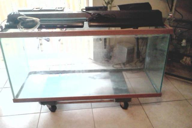 100 Gallon Fish Tank 100 Gallon Fish Tank