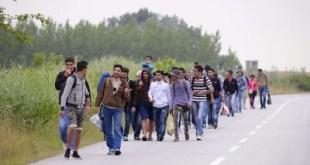 JB 27 Kanjiza - Migranti prevažne zo Sýrie kráèajú v skupine smerom do Maïarska v srbskom meste Kanjiza, pri maïarských hraniciach 25. júna 2015. Na základe údajov Frontexu prichádzajú od zaèiatku tohto roka do Európy èoraz väèšie poèty nelegálnych prisahovalcov cez Turecko a Grécko. Poèet pokusov migrantov preplavi sa cez východné Stredomorie sa zvýšil o viac ako 500 percent. Obzvl dôležité zostávajú dve hlavné imigraèné trasy - cez centrálne Stredomorie z Líbye na juh Talianska a potom cez východné Stredomorie z Turecka do Grécka. FOTO TASR/AP Migrants, mostly from Syria, headed for EU member Hungary, walk in groups towards Hungary in Kanjiza, North Serbia, near the Hungarian border, Thursday, June 25, 2015. (Edvard Molnar/MTI via AP)