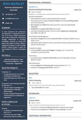 Business Development Resume Examples and Samples - business development sample resume