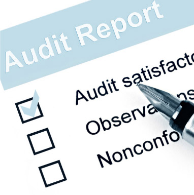OFCCP Disability Recruiting Reporting Compliance and audit assistance - audit report