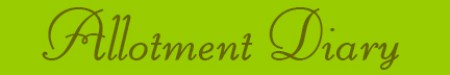 'Allotment Diary' blog post banner