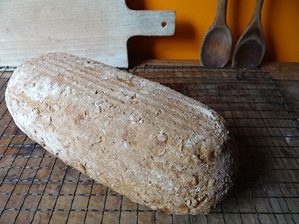 Cakes Spelt Flour