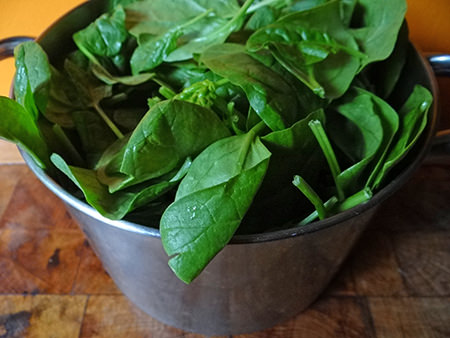 washed fresh spinach