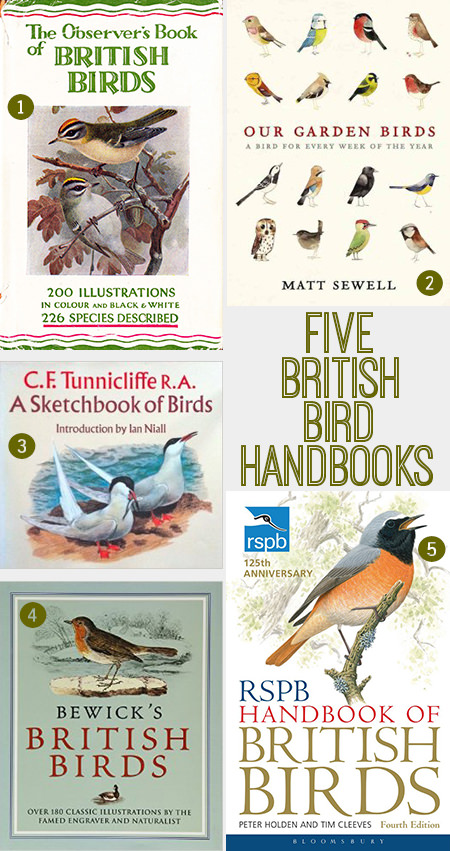 Selection of 5 British bird handbooks | H is for Home