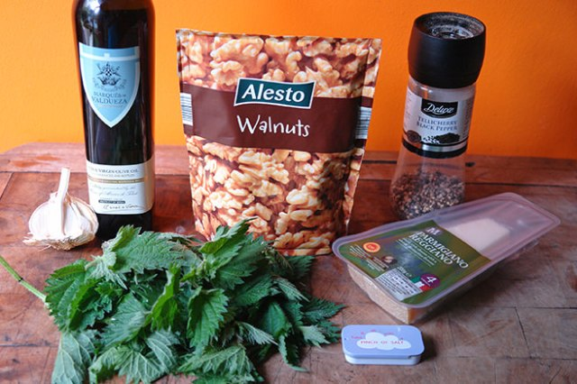 Home-made nettle pesto ingredients
