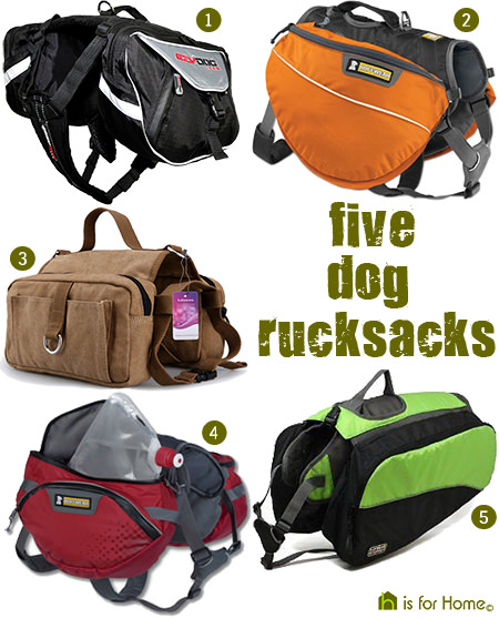 selection of 5 dog rucksacks