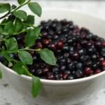 Berry Delicious!
