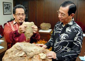 'Bijlen van 1,8 miljoen jaar oud opgegraven in Maleisië'