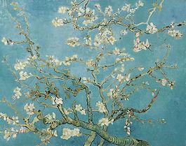 Amandelbloesem - Vincent van Gogh