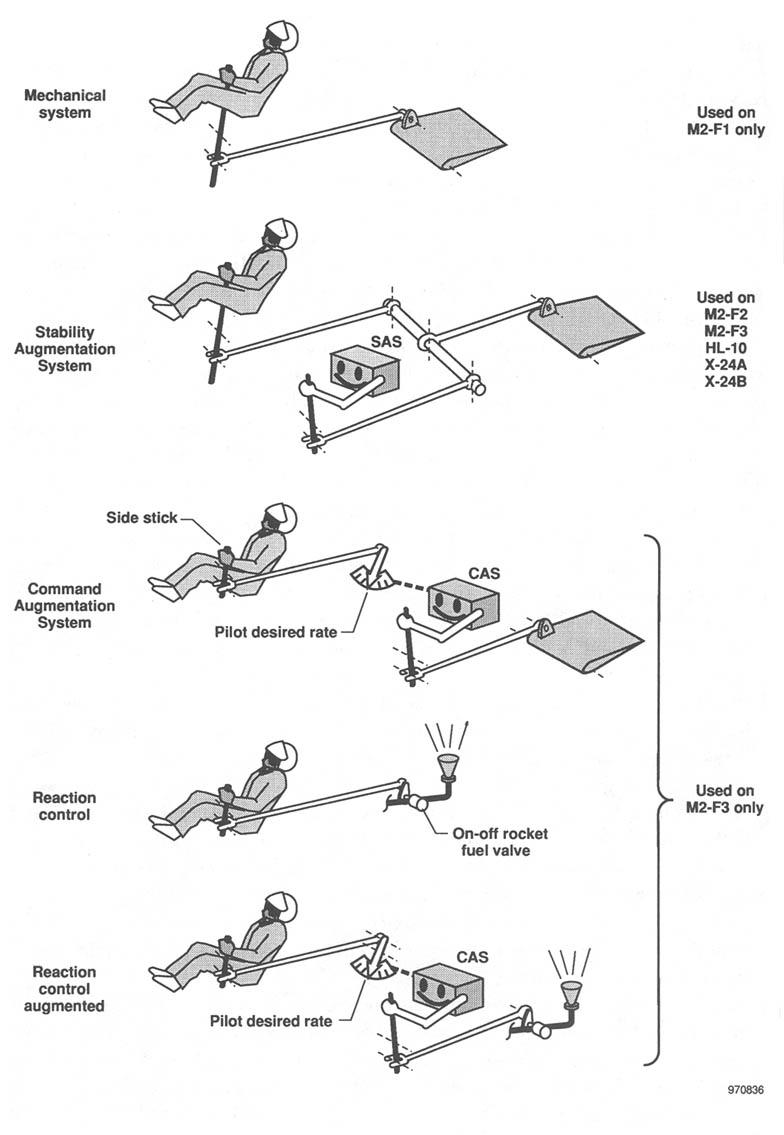 body schematic