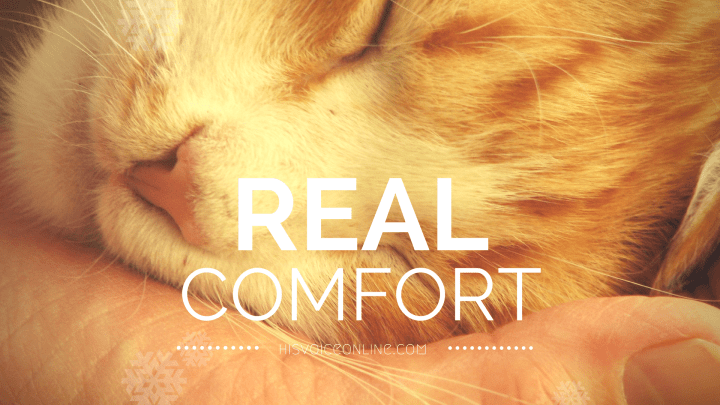 Is Real Comfort Available?