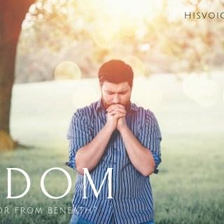 wisdom-2