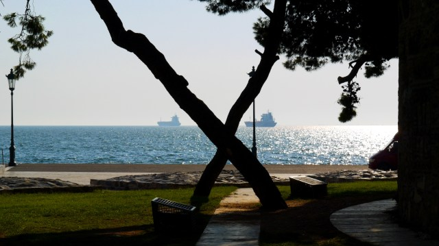 Crossed tree trunks and the sparkling sea in the background - Thessaloniki, Greece