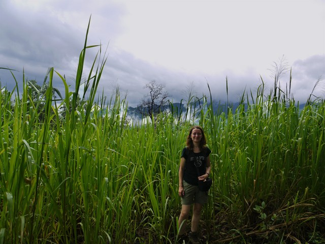 Family celebrations in Southeast Asia – Part 2: funeral (Thailand)