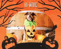 Dog Halloween Costume Contest - Hi-Wire Brewing