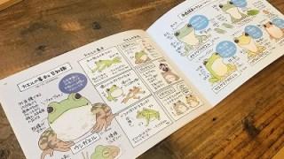11月ひより。の流行通信 ~カエルの見分け方