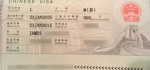10 year china_visa