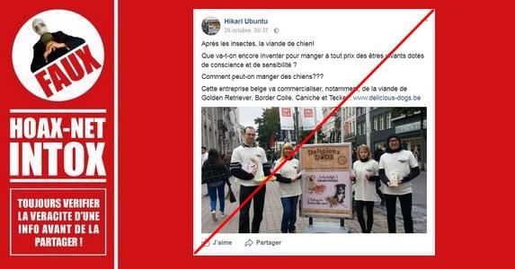 Non, aucune entreprise ne va commercialiser de la viande de chien en Belgique.