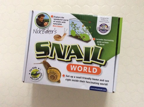 snail world