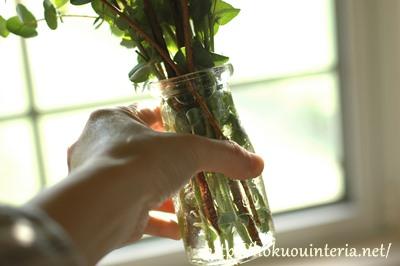 かわいい小瓶