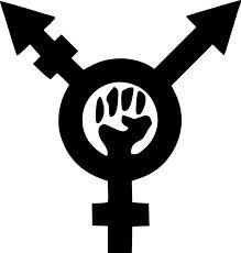 trans rights symbol