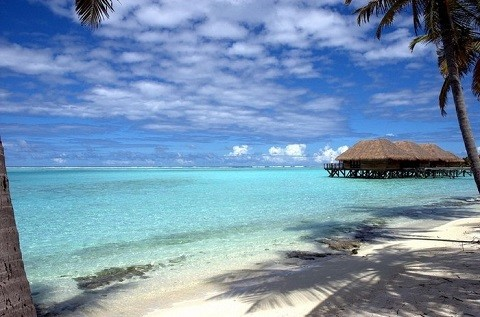 Отдых на островах, Мальдивы