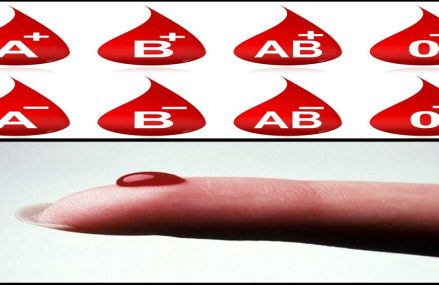 """What's The Big HYPE Around People With Blood Type """"0""""?"""