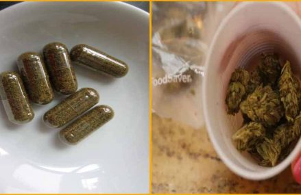 Cannabis Capsule Is So Powerful It Can Replace Any Pain Killer