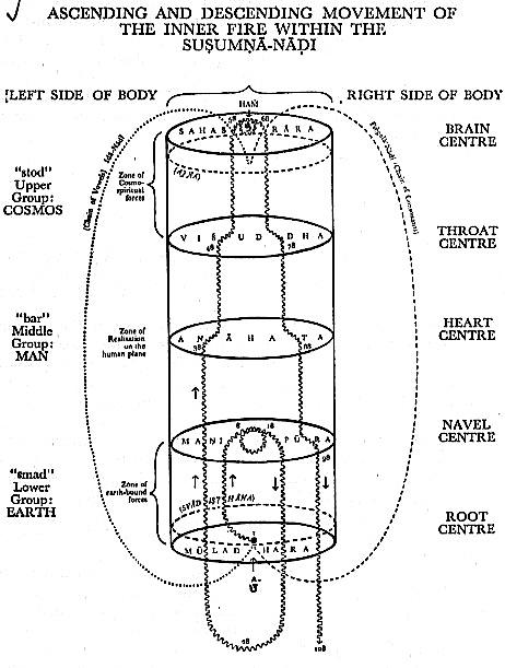 frostbite diagram nata auto electrical wiring diagramRadiowiringdiagram2005chevytrailblazerwiringdiagram2005chevy #7