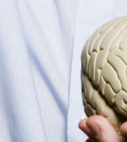 Hvordan fungerer hjernen?