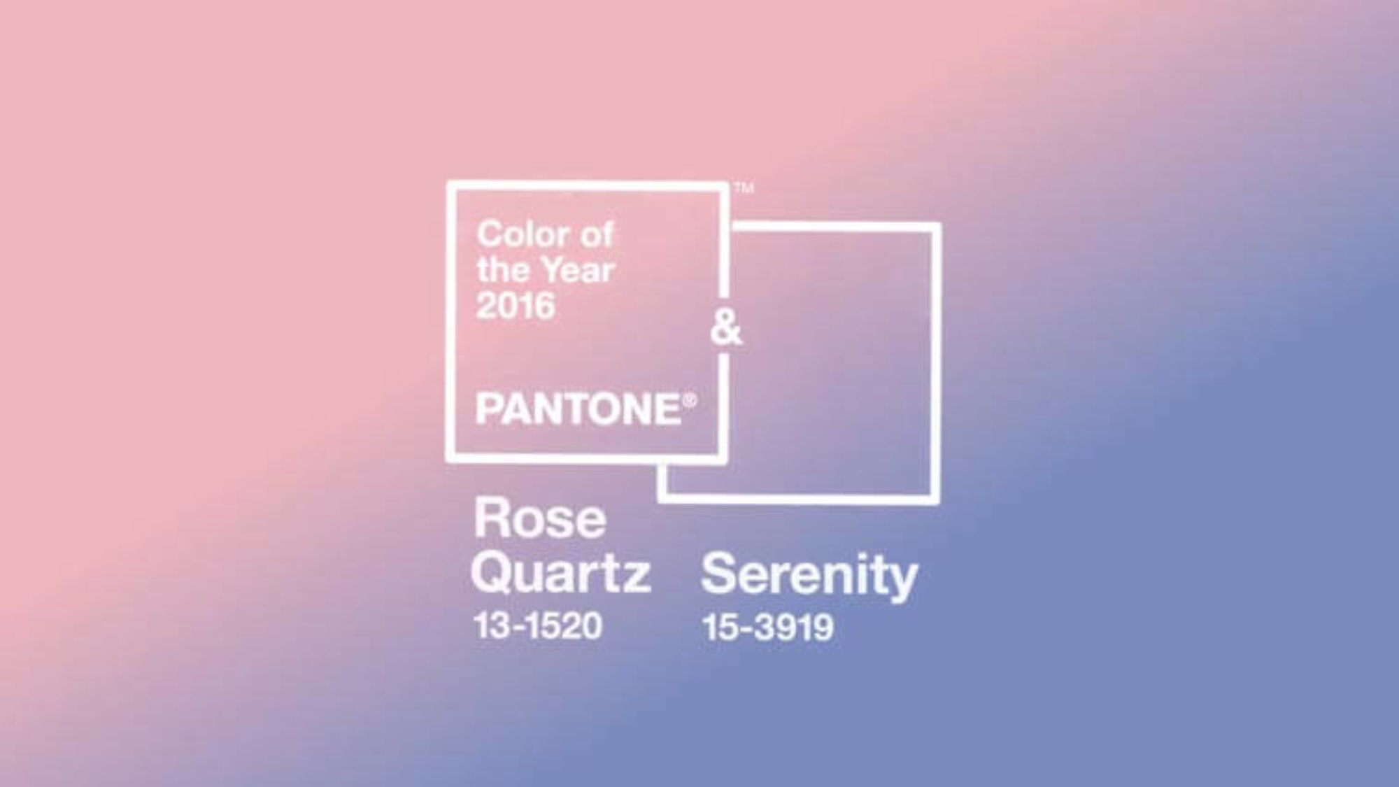 Pantone Color 2016 Rose Quartz Serenity Pantone Color Of The Year 2016