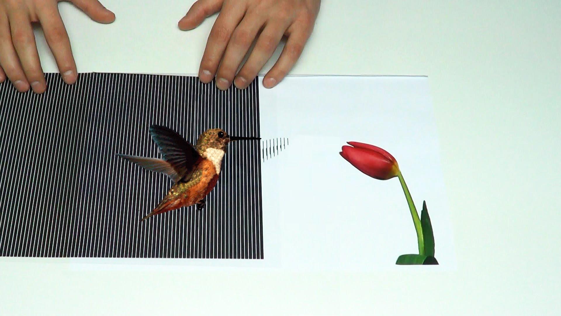 3d Optical Illusion Hd Wallpaper Amazing Animated Optical Illusions