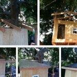Дом на дереве 7