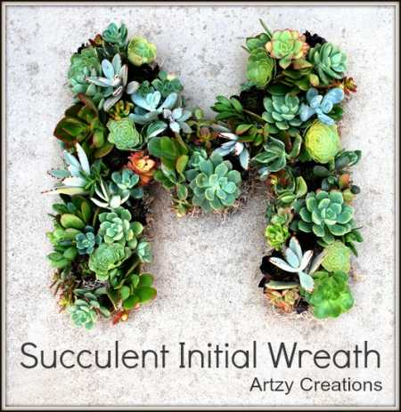 Succluent-Wreath