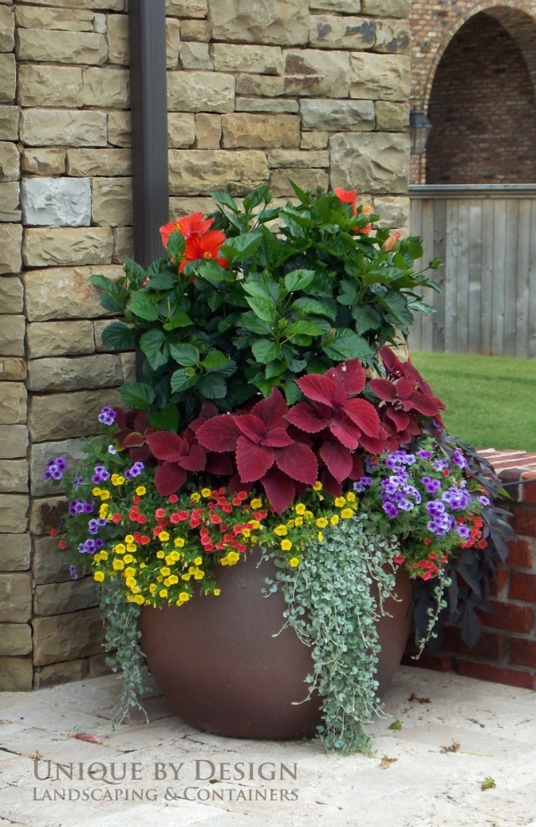 8 stunning container gardening ideas home and garden for Outdoor planter ideas